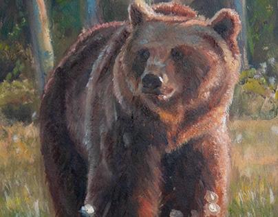 Bear Oil Painting