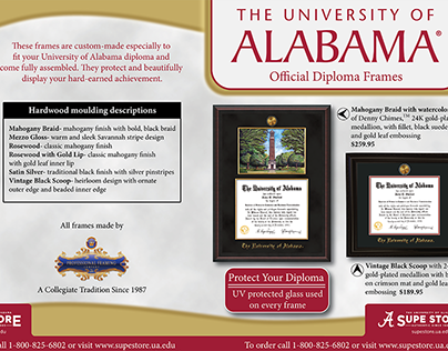 The University of Alabama brochure