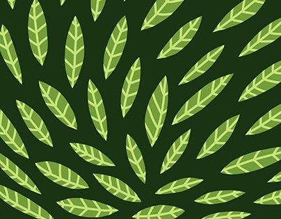 Leaf Pattern Design