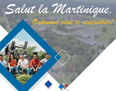 Martinique Flyer
