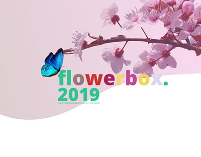 Flower Explore UI-2019