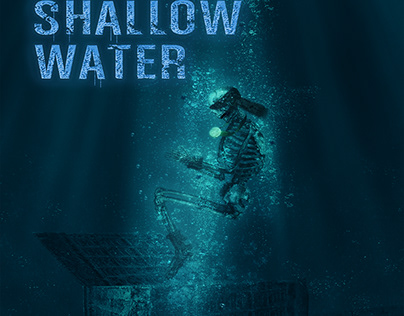 Book Cover: The Depth of Shallow Water