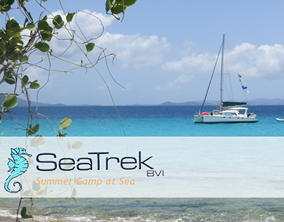 SeaTrek BVI Website