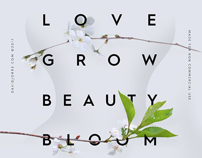 Love Grow Beauty Bloom Vol.05