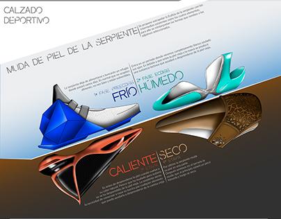 Calzado Deportivo Conceptual