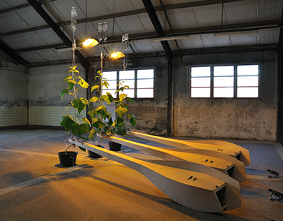 Sound art installation 'Parthenocarp'