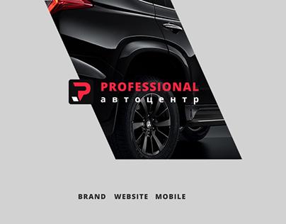 Professional | car dealer & service | Website design