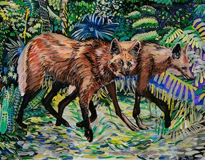 Maned Wolf or Brazilian Wolf