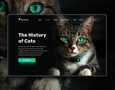 The History Of Cats - Web Design - Landing page