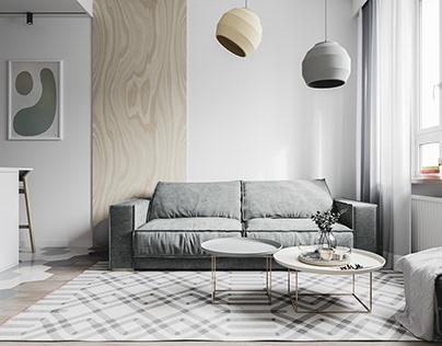 Plywood apartment