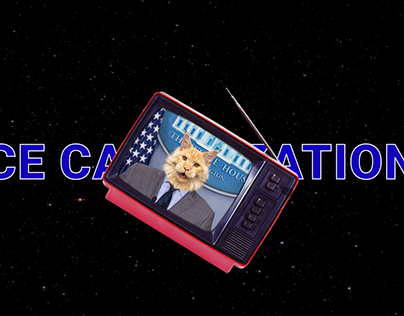 """NASA Space apps 2019. Project """"CATANIZATION"""""""