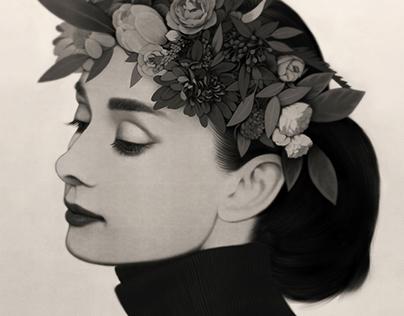 Portrait of a Beauty : Audrey Hepburn