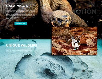 GoGalapagos Website Concept