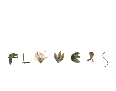 Flowers - Collage and type