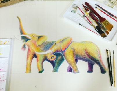 Field Museum Elephant Illustration
