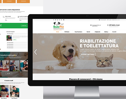 Web designer layout