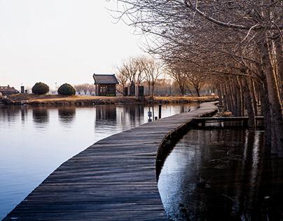 唐山南湖 学习摄影的开始