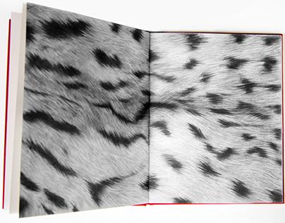Holotype - Graphite Artist's Book