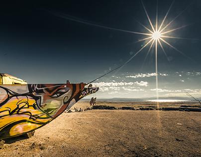 Salton Sea : The lake of death