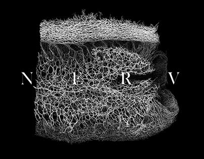 NERV Textures vol.1