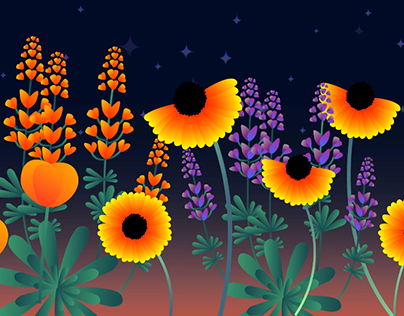 Wildflowers Animation