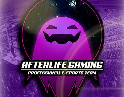 AfterLife Gaming: Social Media Branding 2017
