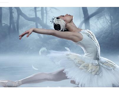 """Azerbaijan State Opera Ballet Theatre"" Web site Design"