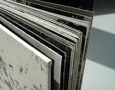 "E.A. Poe ""The Raven"" Book"
