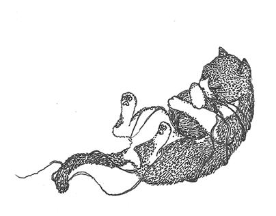El gato y la madeja perdida