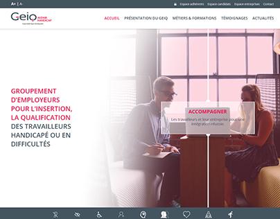 Webdesign GEIQ AvenirHandicap