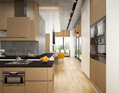 Contemporary Minimal Kitchen