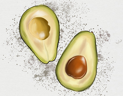 Digital Avocado Sketch