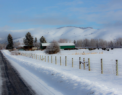 Winter Scenes From Halfway, Oregon