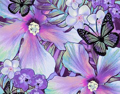 Violet Hibiscus Aloha