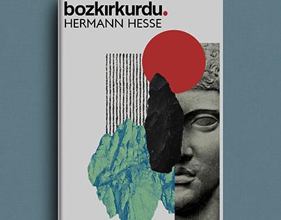 Hermann Hesse - Bozkırkurdu Book Cover