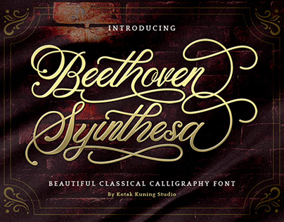 Beethoven Syinthesa - Free Download