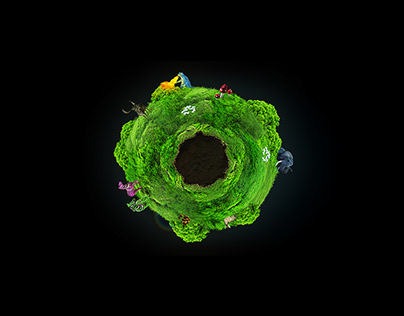 PF2011 Microsite