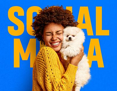 Social Media - JB VET