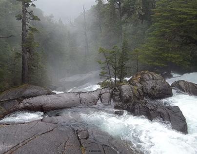Áreas naturales protegidas I