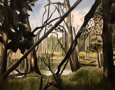 Michigan Swamp