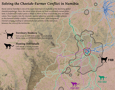 Solving the Cheetah-Farmer Conflict in Namibia