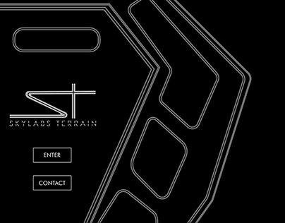 Skylabs Terrain Website Design