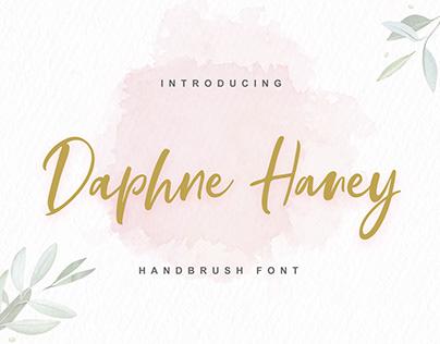 Daphne Haney Handbrush font