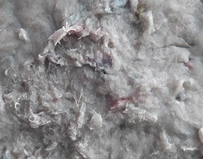 DISE3437. Starch Glue