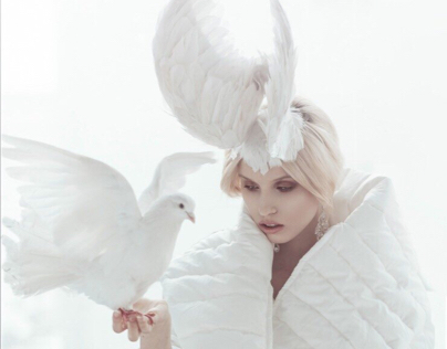 Dove soul