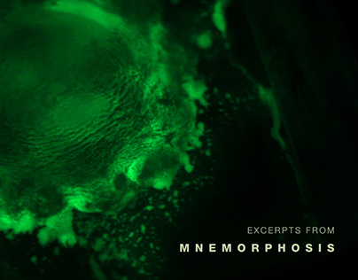 Studies for Mnemorphosis
