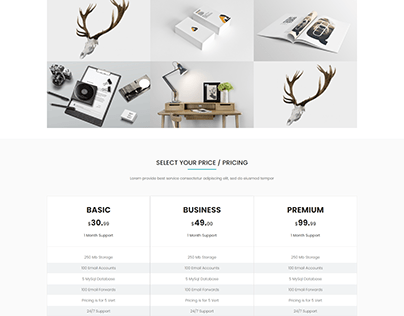 Outfit- Business, Consultancy Corporate WordPress Theme