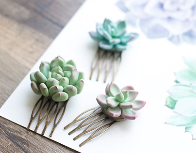 Handcrafted succulents