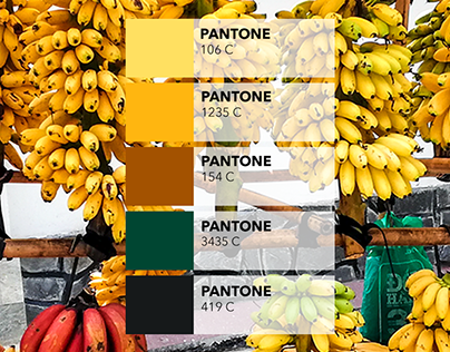 Pantone extraction from pictures