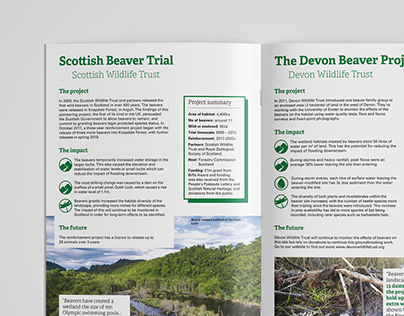 Beaver Re-introduction Booklet Design for RSWT